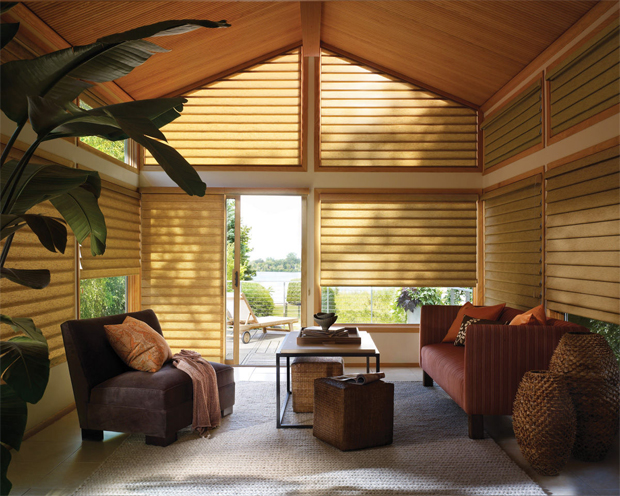Blinds And Shades By Hunter Douglas Offered By Foster